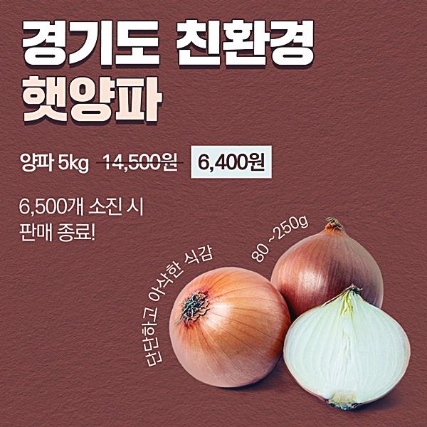 경기도 친환경 양파, 카카오톡에서 최대 56%..